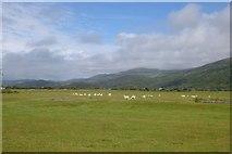 SH5832 : Farmland north of Harlech by DS Pugh