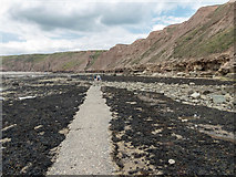 TA1281 : Pathway on Old Quay Rocks, Filey, Yorkshire by Christine Matthews