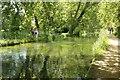 SU3327 : Walk along the Stream by Bill Nicholls
