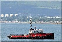 "J4186 : The ""Kamsar"", Belfast Lough - August 2015(2) by Albert Bridge"