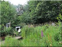 SE2535 : Hollybush Conservation Centre: pond by Stephen Craven