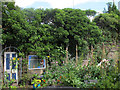 SE2535 : Hollybush Conservation Centre: the Gruffalo's house by Stephen Craven