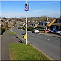 ST3090 : Combined speed limit and speed camera sign, Rowan Way, Malpas, Newport by Jaggery