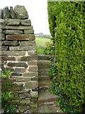 SE0322 : Steps on Sowerby Bridge FP141, Link D by Humphrey Bolton