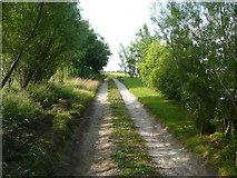 SE0322 : Driveway at Long Royd by Humphrey Bolton