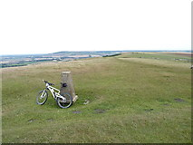 TQ4805 : Firle Beacon trig and hilltop by Richard Law