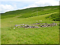 NY2994 : Ruined sheepfold in the valley of the Meggat Water by Oliver Dixon
