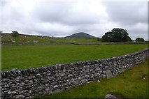 SH6027 : Field and walls by DS Pugh