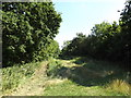 TL0652 : Bridleway to Ravensden Road by Geographer