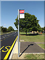 TL0652 : Bus Stop sign on Wentworth Drive by Adrian Cable