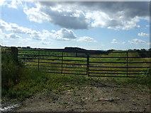 NZ0266 : Gated farm track by JThomas