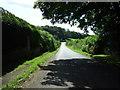 NZ0365 : Lane near St James's Church, Newton Hall by JThomas