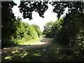 TL0752 : Bridleway to Ravensden Road by Geographer