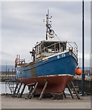 J5082 : The 'Marliona' at Bangor by Rossographer