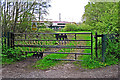 NY3857 : Decorative gate, Kingmoor Sidings Nature Reserve by Rose and Trev Clough