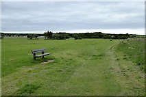 TA1281 : Footpath and seats on North Cliff Country Park, Filey by David Smith