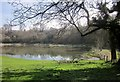 SP1213 : Pond at  Upper End, Eastington by Derek Harper