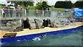 SW7126 : Cornish Seal Sanctuary, Gweek by Richard Cooke
