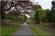 TQ5940 : Path to Grosvenor Park by N Chadwick