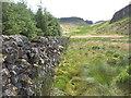 NS4877 : Wall below Dennistoun's Craigs by David Robertson