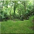 SS6141 : Gate and stile, Winford Plantation by Hugh Craddock