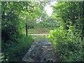 SS6239 : End of lane to Button Bridge by Hugh Craddock