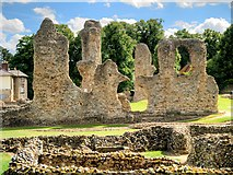 TL8564 : Remains of The Abbey at Bury St Edmunds by David Dixon