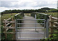 SN4019 : Wales Coast Path footbridge over Tawelan Brook, Carmarthen by Jaggery