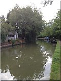 SP6989 : Towpath towards Foxton by Dave Thompson