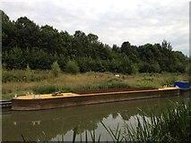 SP6989 : Towpath towards Foxton Locks by Dave Thompson