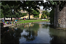 ST5545 : Wells : Bishop's Palace Moat by Lewis Clarke