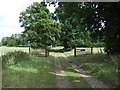 TM1899 : Track to Bracon Common by JThomas