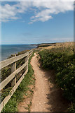 TA1974 : Cliff Path, Bempton Cliffs, Yorkshire by Christine Matthews