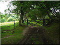 SJ0556 : Green Lane on the Clwydian Way by Maggie Cox