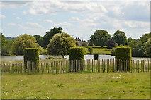TQ5244 : Topiary & lake, Penshurst Park by N Chadwick
