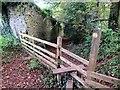 SN3410 : Llwybr Lan Fach Path by Alan Richards