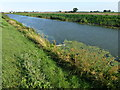 TL2489 : The River Nene (Old course) near Ramsey St Mary's by Richard Humphrey