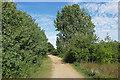 TQ0772 : Path around the Clockhouse Lake by Alan Hunt
