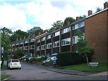 TQ3473 : Tarleton Gardens, Forest Hill by Chris Whippet