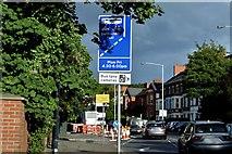 J3674 : EWAY works, Upper Newtownards Road, Belfast - August 2015(5) by Albert Bridge