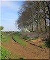 SP1013 : Bales near Winterwell Barn by Derek Harper