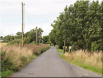 O0159 : Country Road and Telegraph Poles by C O'Flanagan
