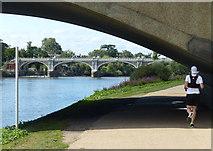 TQ1774 : Thames Path passing under Twickenham Bridge by Mat Fascione