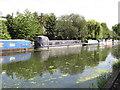 TQ1384 : Serenity, narrowboat on Paddington Branch canal by David Hawgood
