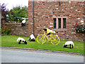 NY5633 : The yellow bikes of Langwathby (1) by Oliver Dixon
