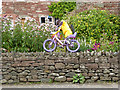 NY5633 : The yellow bikes of Langwathby (11) by Oliver Dixon