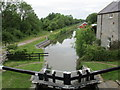 N0721 : The Grand Canal below Lock 33 by Jonathan Thacker