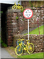 NY5733 : The yellow bikes of Langwathby (19) by Oliver Dixon