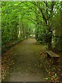 TQ3425 : Footpath to The Welkin, Lindfield by Simon Carey