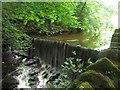 SD9952 : Weir on Eller Beck by Graham Robson